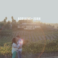 Adriane + Juan // Engagement // Callaway Winery