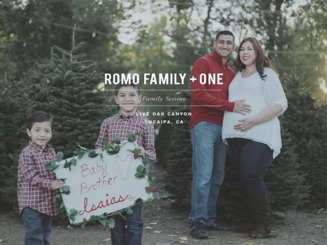 Romo_Family_2013_Dec_blog