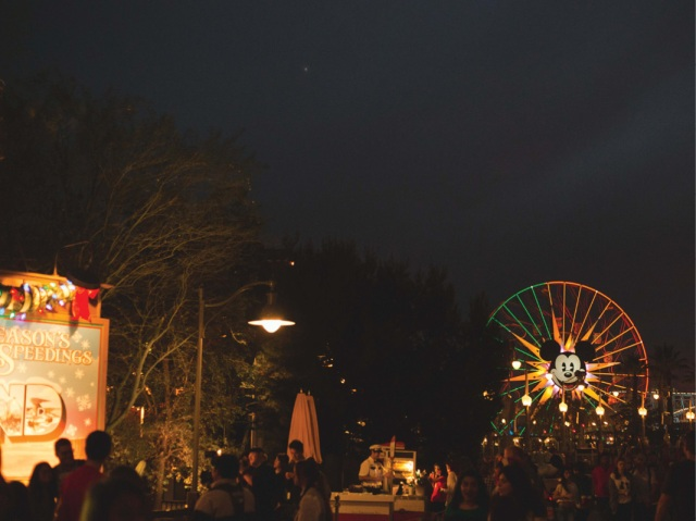 Disneyland_Christmas_blog17